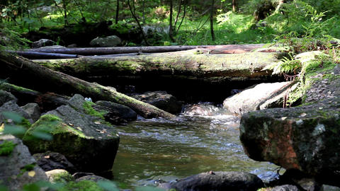 Mountain  Stream stock footage