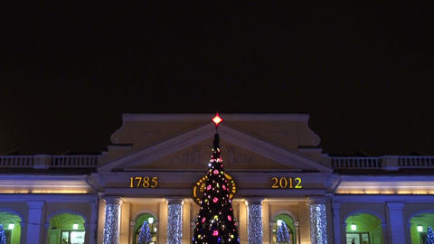 New year's tree Stock Video Footage
