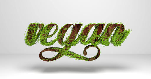 "The word ""vegan"" in wood look. 3d rendering Animation"
