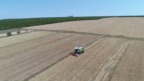 Aerial View of Combine Harvester Working Footage