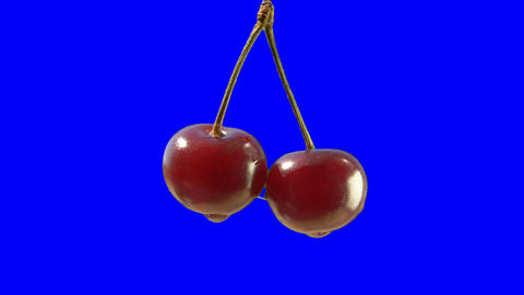 A pair of cherries on a blue background GIF