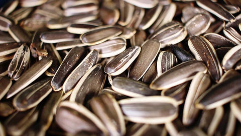 Sunflower seeds texture video rotating food closeup background Live Action