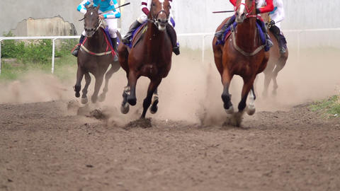 Horse Racing At The Racetrack 1