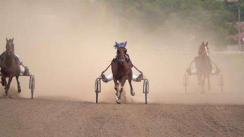 Horse Racing Of The Wagons Stock Video Footage