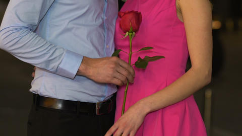Male giving rose to female, beginning of romantic relationship, tenderness, date Footage