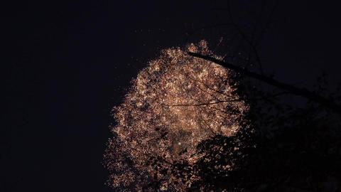 4K Osaka Tenjin Matsuri Fireworks festival / 大阪天神祭花火大会 ライブ動画