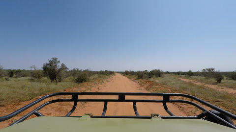 game drive in kenya Live Action