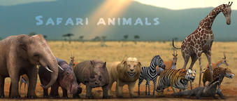 3DRT-characters-Safari-animals-pack 3D Model
