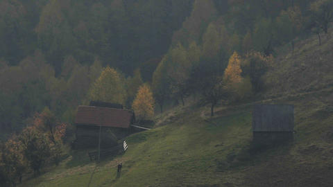 Fall above the mountains, a silence Loneliness black horse eating some grass, Footage