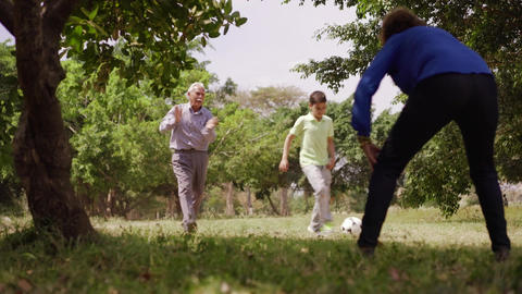 12-Happy Family Grandma Grandpa And Boy Playing Football Footage