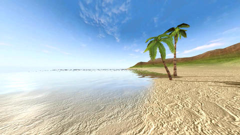 Beach with palm trees Animation