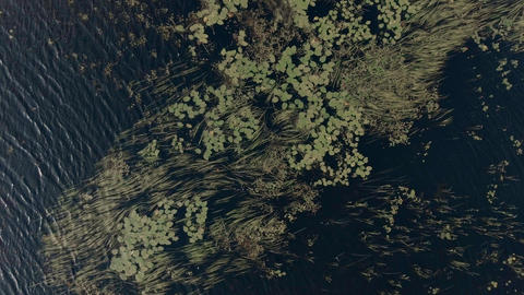 Aerial Establishing shot of a lake in Georgian Bay, Ontario Footage