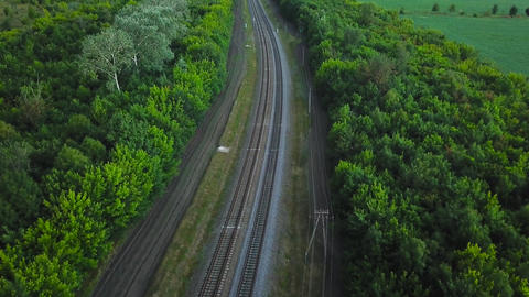 Empty straight double-way railways surrounded by green forest, aerial top view Footage