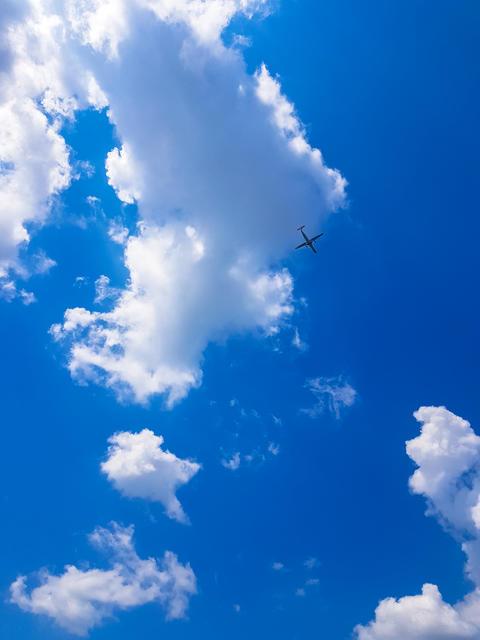 Plane Flies in sky Photo