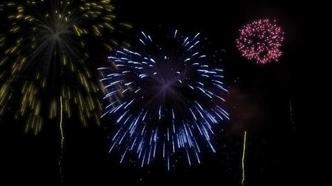 Fireworks display in various bright colors Animation