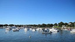 Boats in a Marina Footage
