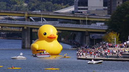 Rubber Duckie in Pittsburgh 3610 Footage