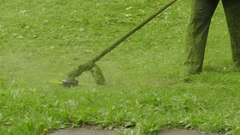 Gardener Is Cutting Grass With A Hand-Held Lawn Mower ビデオ