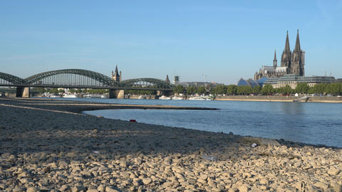 Drought in Germany, low water on Rhine river Footage