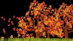 RGB Alpha beautiful autumn season with nature motion background Animation