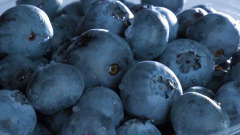 Blueberries GIF