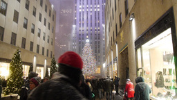 Rockefeller Center Christmas Tree 3896 Footage