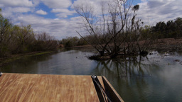 The Swamplands of Louisiana as Seen from an Airboat 4021 Footage