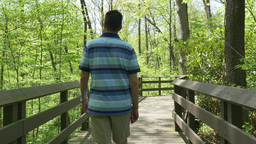 4K A Man Walks on a Path in the Woods 4372 Footage