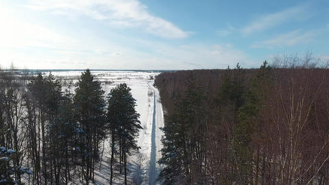 Winter forest aerial photography Footage