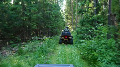 Quad bike through the forest Footage