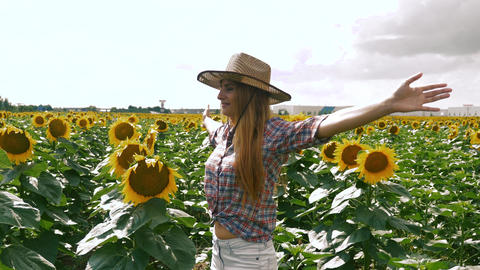 Happy farmer girl embracing the sunflower field Footage