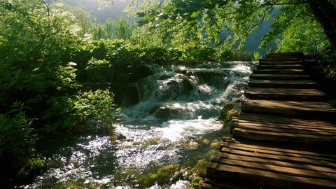 Small beautiful waterfall near wooden path Footage