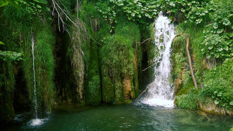 Small beautiful waterfalls and green moss Live Action