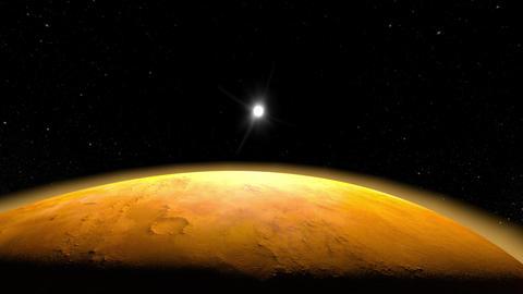 Venus Animation