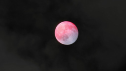 4K Real Full Moon Blood Moon in the Night Sky Footage