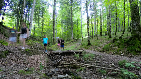 Time Lapse Of A Family Walking In The Forest Over Wooden Brdige Footage