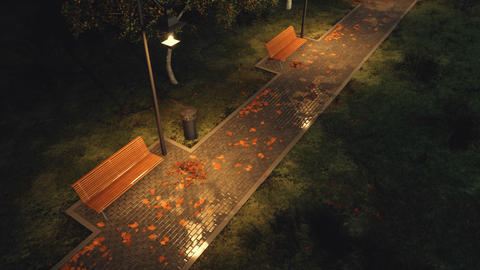 Park walkway lit by street lamps at autumn night 영상물