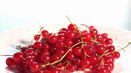 Redcurrant on the white plate Footage