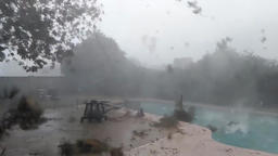 Hurricane with hail knock down all foliage 2 Footage