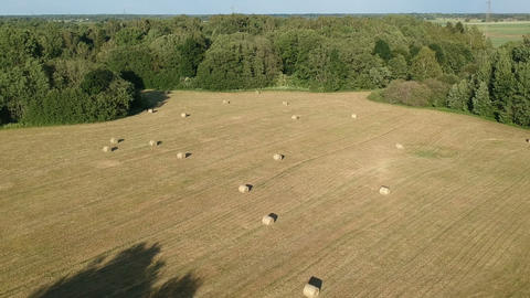 Harvested farmland meadow with hay bales on field, aerial Footage
