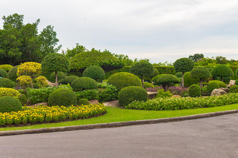 Topiary beautiful garden for relaxation in Rama 9, Bangkok, Thailand Photo