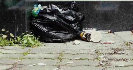 Pile black garbage bag roadside in the city Live Action