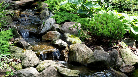Garden waterfall. Garden pond with water flowers. Beautiful pond in a backyard Live Action