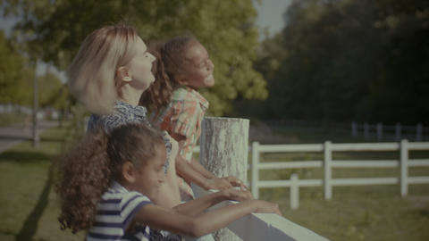 Joyful diverse family leaning on fence outdoors Footage