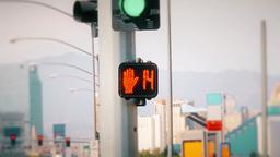 Walk Don't Walk Sign in Las Vegas Footage