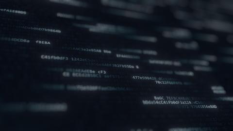 Computer code symbols on the screen. 3D rendering フォト