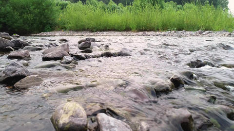 Clean river in nature. Movement of water in a small country river Live Action
