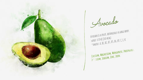 Brief information about Avocado Animation