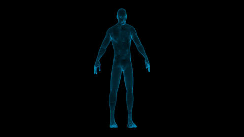 Hologram Human Man Animation