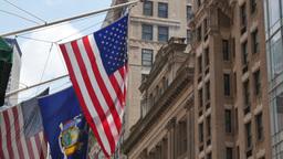 Flags Hang on Manhattan Buildings Footage